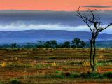 Арта-Варарлпана, хребет Флиндерс, Южная Австралия
