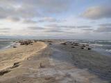 Остров Сейбл, Атлантический океан, Канада