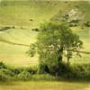 Уилмингтонский великан, Суссекс, Англия