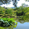 Великий синтоистский храм, Исе, Хонсю, Япония