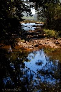 Нимбин, Новый Южный Уэльс, Австралия